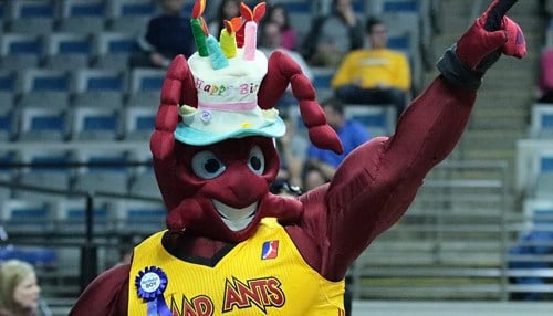 Pacers Sports & Entertainment acquired the Mad Ants last year.
