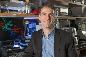 Notre Dame researcher Dr. Brian Baker is using a $4 million grant to engineer new immune systems.