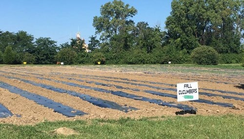 (Image of The Finish Line's Urban Farm courtesy of the city of Indianapolis.)