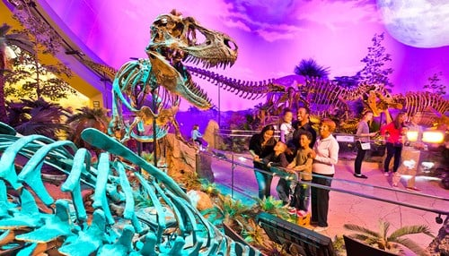 The Dinosphere was listed as a highlight of the museum. (photo courtesy The Children's Museum of Indianapolis)