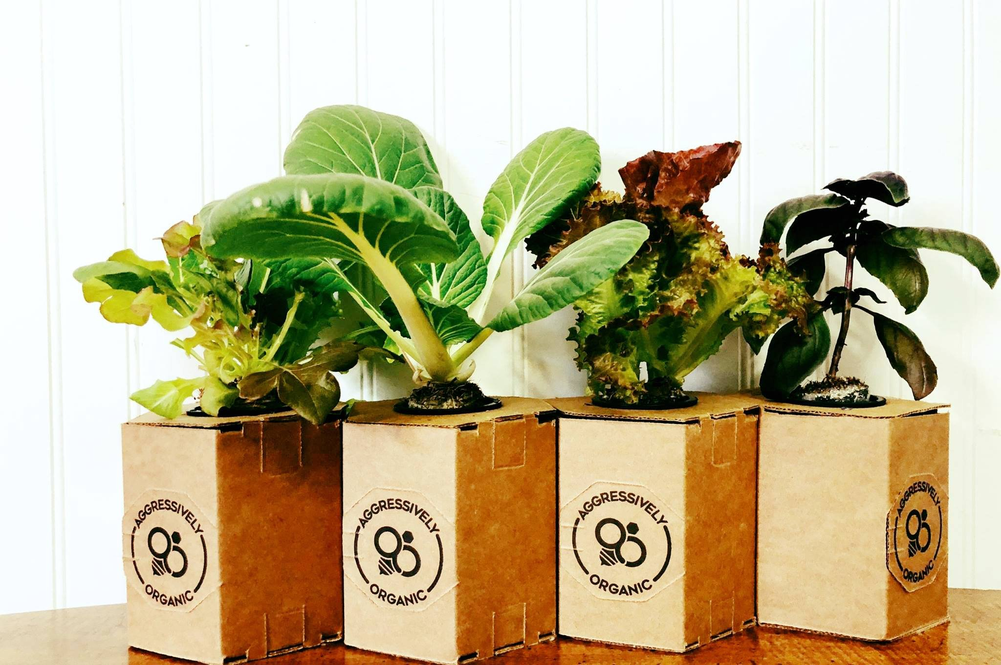 The company's starting point is five types of lettuces and herbs, including arugula, basil, and specialty lettuces that aren't commercially grown.