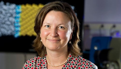 (Image of Patricia Clark courtesy of the University of Notre Dame.)