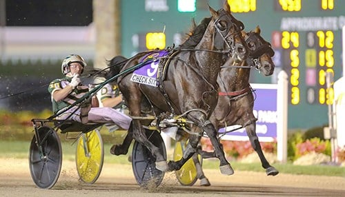 (photo courtesy Hoosier Park)
