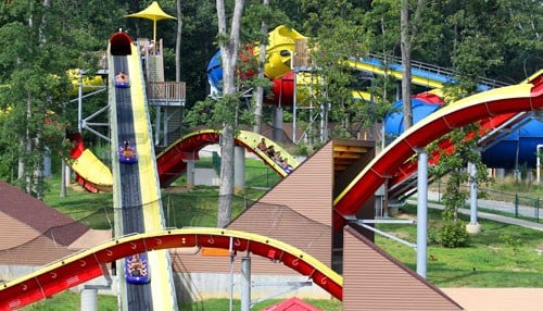 Wildebeest was honored as the best water park ride for the sixth straight year.