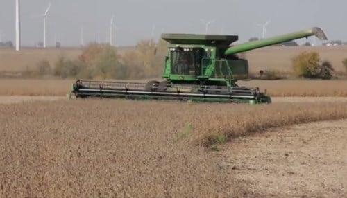 The Indiana Soybean Alliance says the state's soybean farmers stand to gain from expanded animal agriculture operations as well.