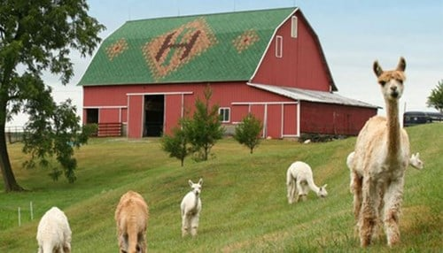 Sheets Barn in Howard County was one of the top 10 Bicentennial Barns.