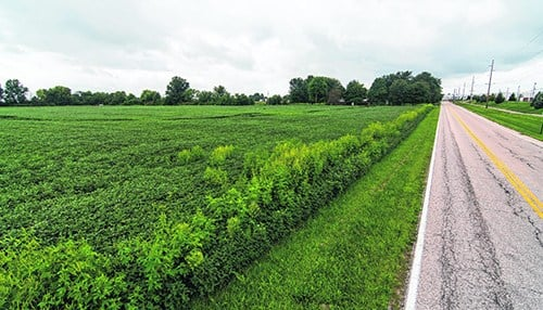 The site along Allen Road in Greenwood was previously proposed for a FedEx distribution center. (photo courtesy of the Daily Journal)