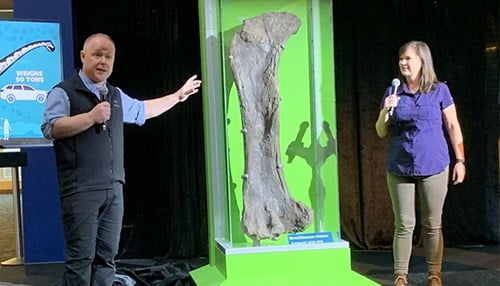 Phil Manning and Victoria Egerton show off a Brachiosaur femur found at the Wyoming site that is on display at the museum. (photo courtesy of the Natural History Museum)